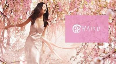 haiku logo image