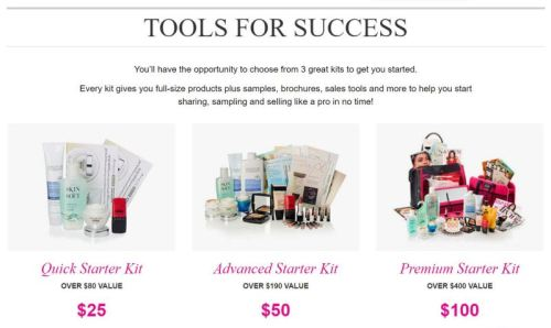 Tools for Success Avon Starter Kits
